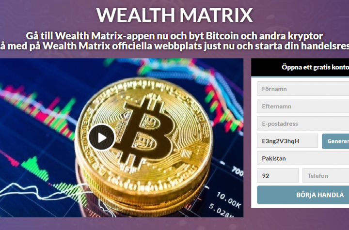 wealth matrix